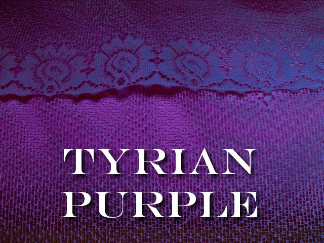 tyrian purple greek porphyra latin purpura also